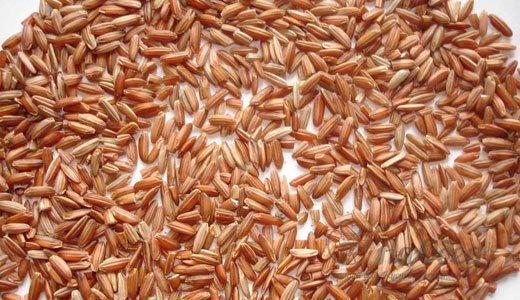Рис бурый коричневый